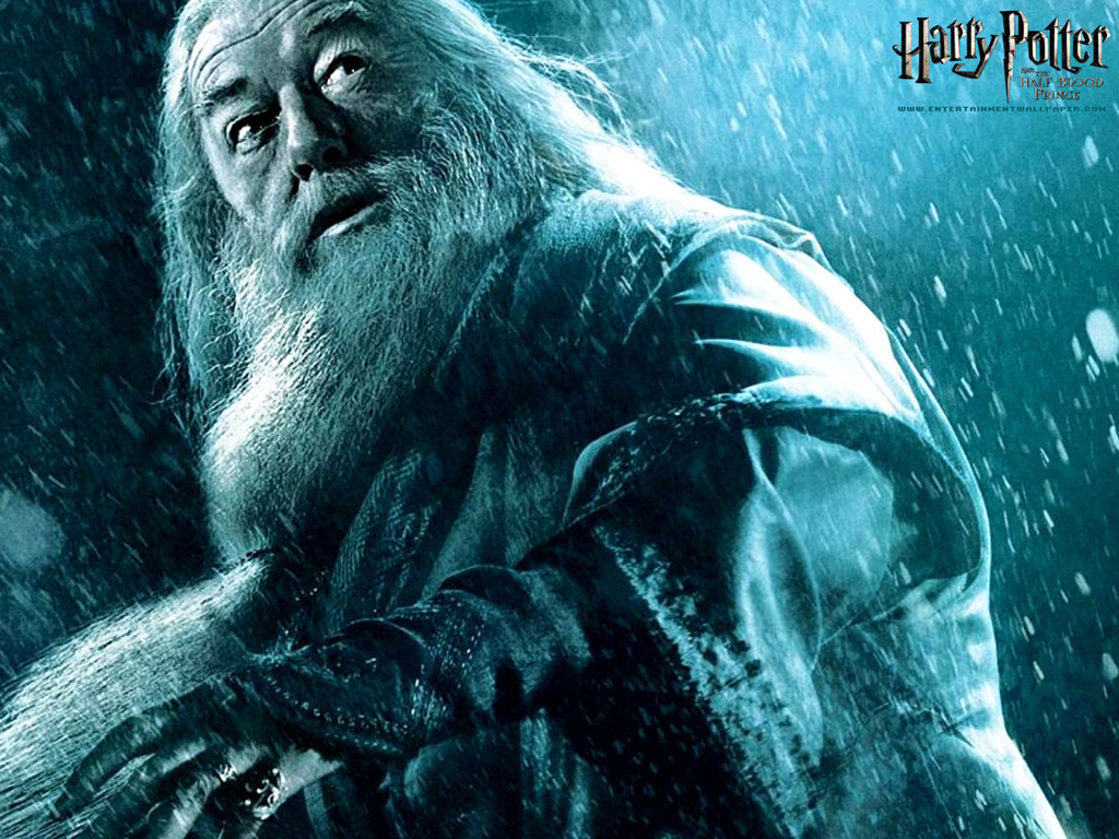 Harry looks to Dumbledore really as the father figure role model 1024x768