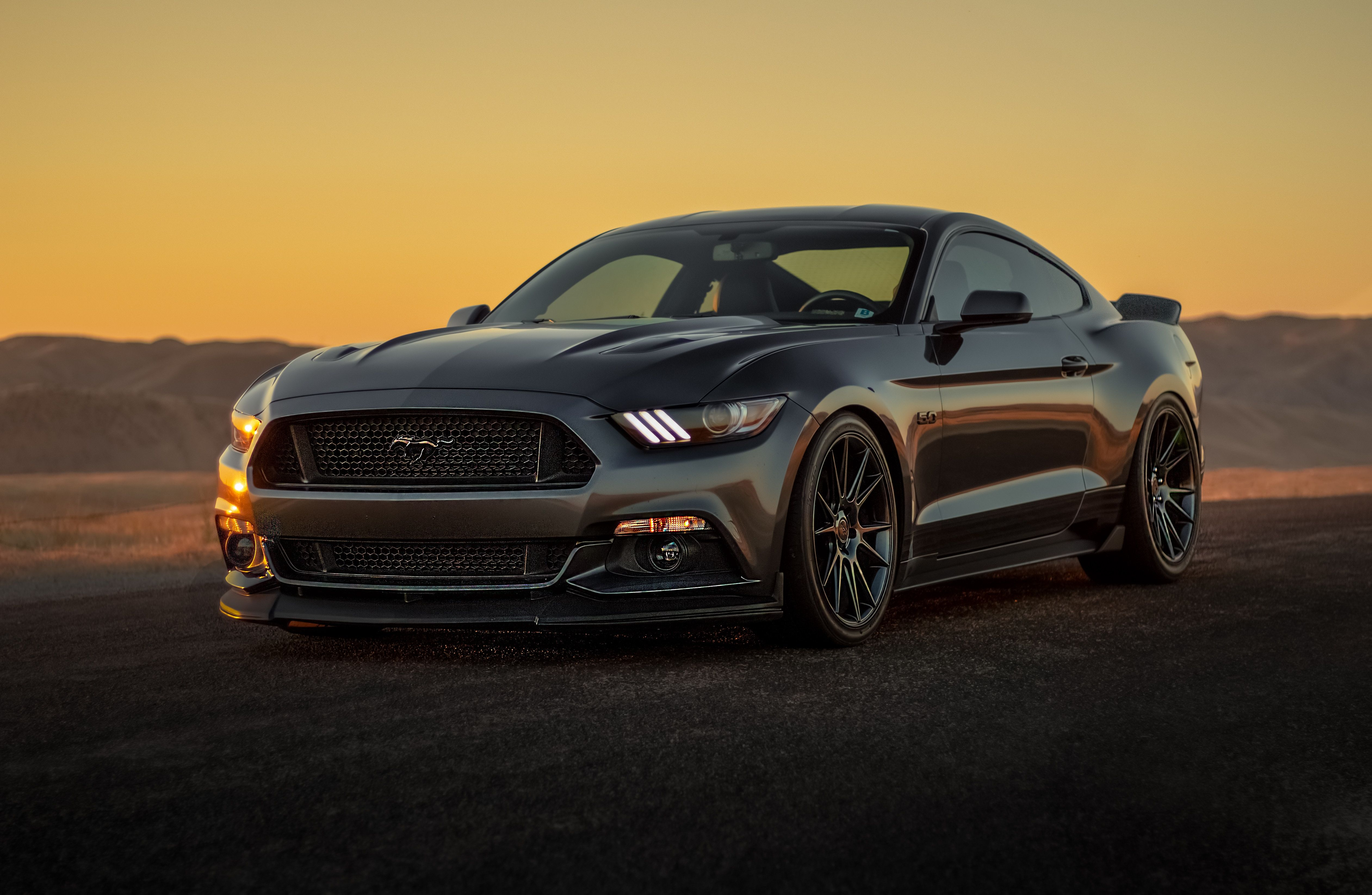 Black Mustang Wallpapers   Top Black Mustang Backgrounds 5045x3290