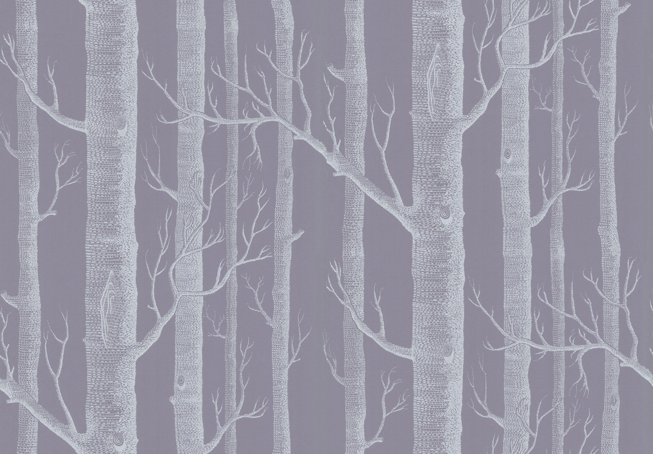 Woods 6912151   New Contemporary Two   Cole Son 2165x1504