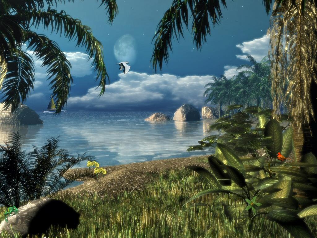 Fully animated beach scene Birds dolphins boats chameleons 1024x768