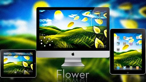 50 Beautiful Flower Wallpapers Download Wallpaper 500x281