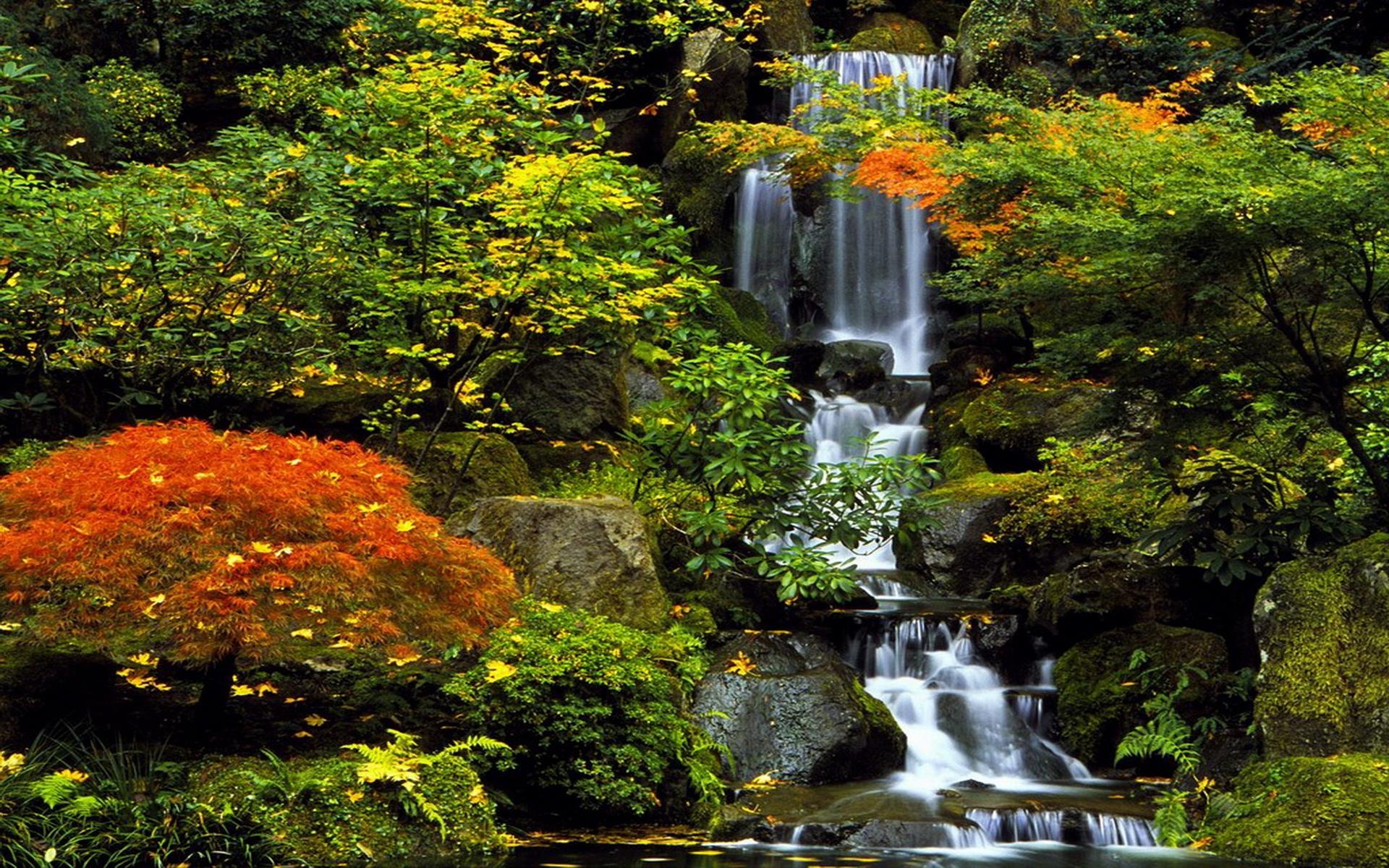 comJapanJapanese Garden Wallpapersimagepagesimage9htm 1920x1200