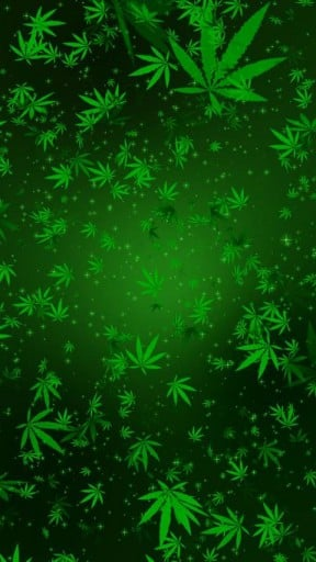 Trippy Weed Leaf Wallpapers Live Wallpaper App For 288x512