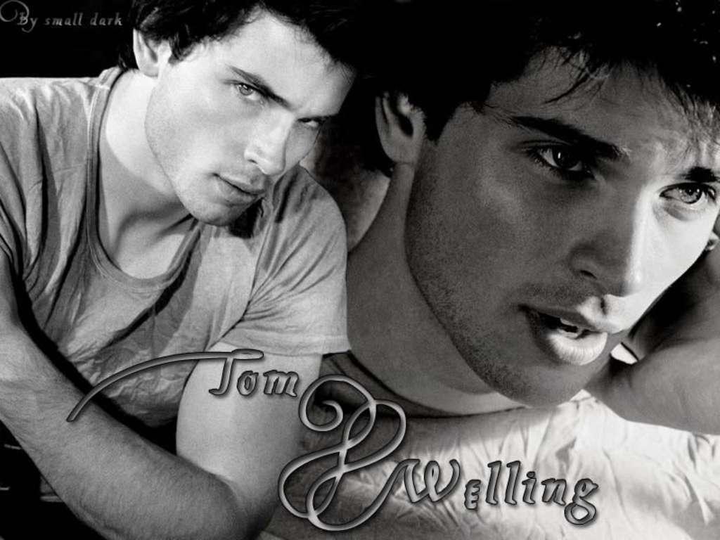 Tom WellingWallpaper   Tom Welling Wallpaper 9739256 1024x768