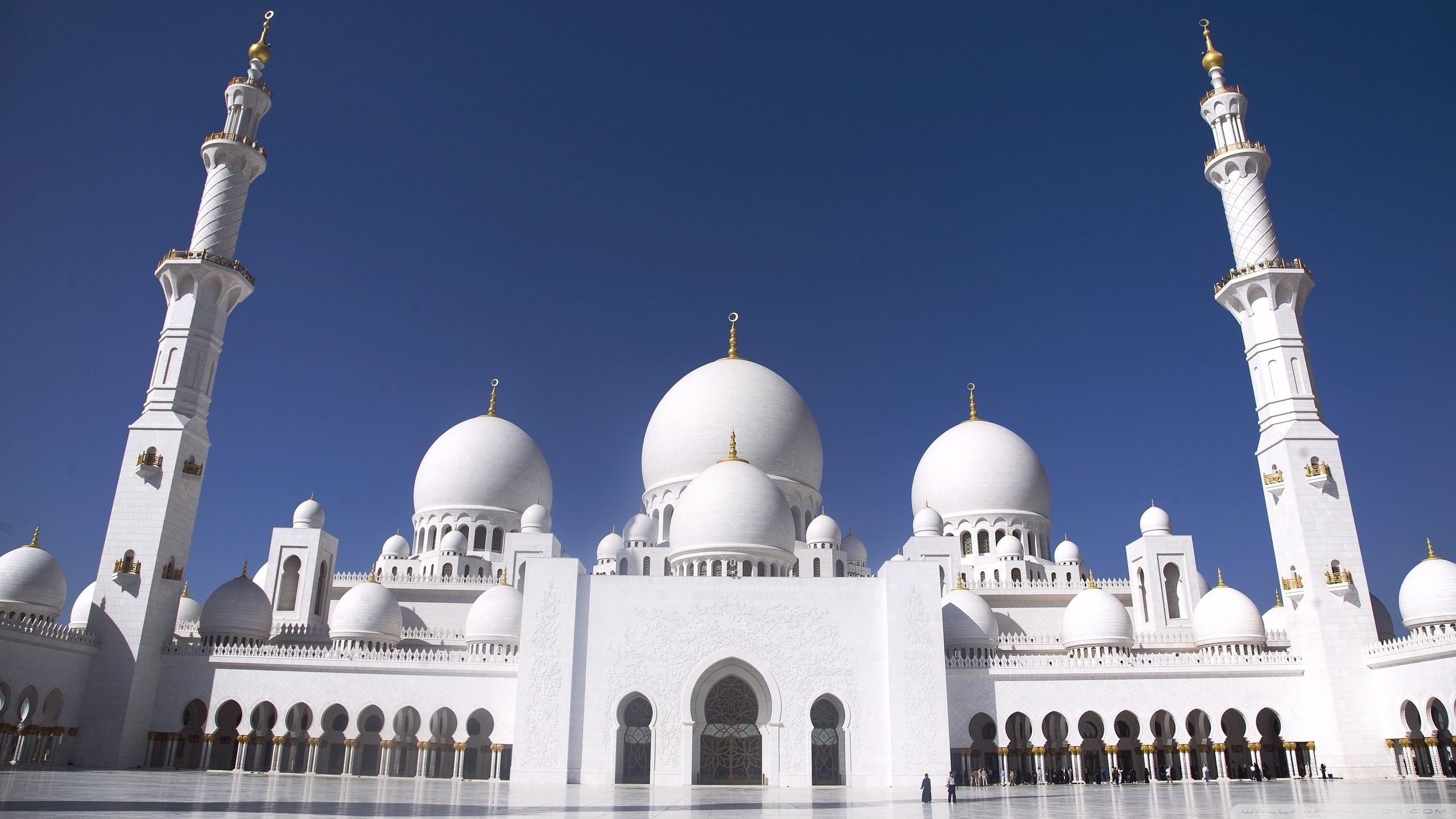 Hdwallpapers87com   Download Sheikh Zayed grand mosque abu dhabi 2560x1440