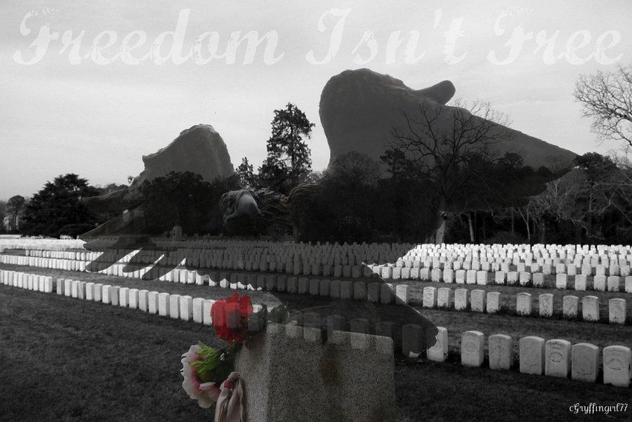 Freedom Isnt by Gryffingirl77 900x601
