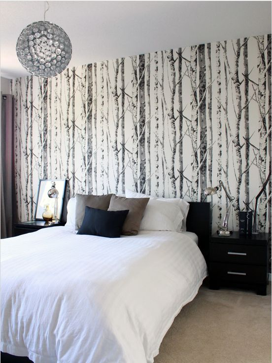 EH61008   Contemporary Black and White Birch Tree Wallpaper from Eco 552x736
