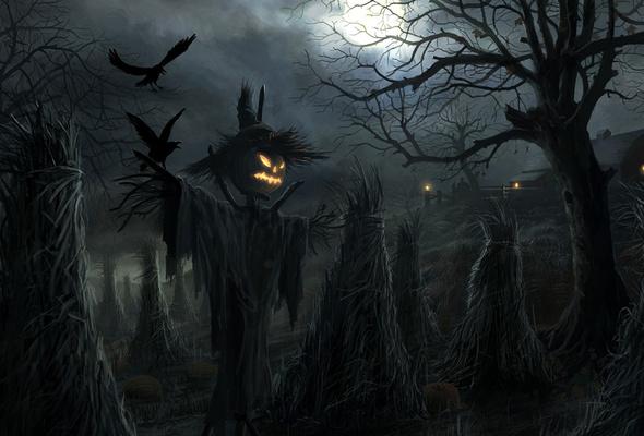 Wallpaper halloween night dark raven Scarecrow desktop wallpaper 590x400
