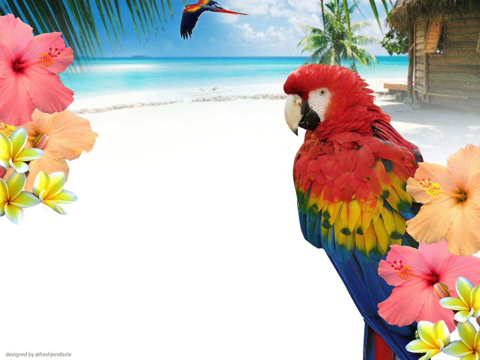 twitter backgrounds twitter backgrounds blog design Fresh 1600x1200