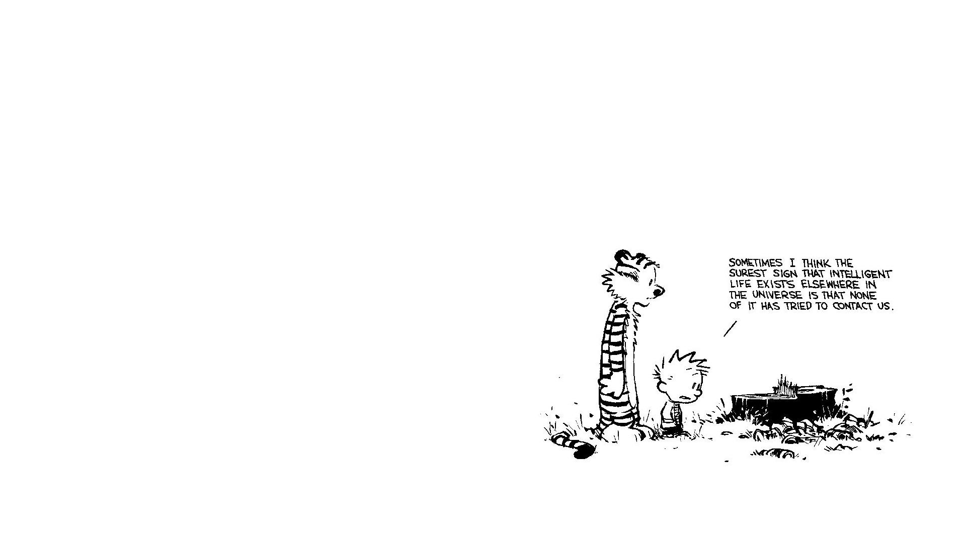 Free Download Calvin Hobbes Wallpaper 1920x1080 Calvin Hobbes