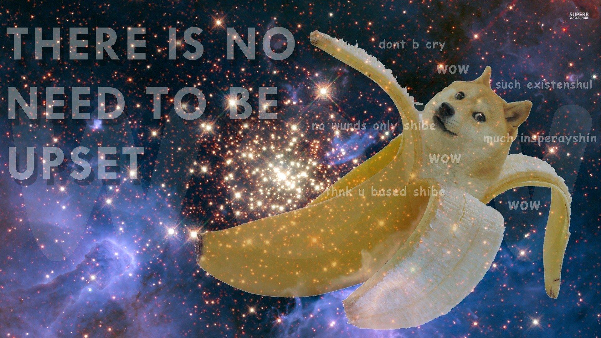 Inspirational Doge doge 1920x1080
