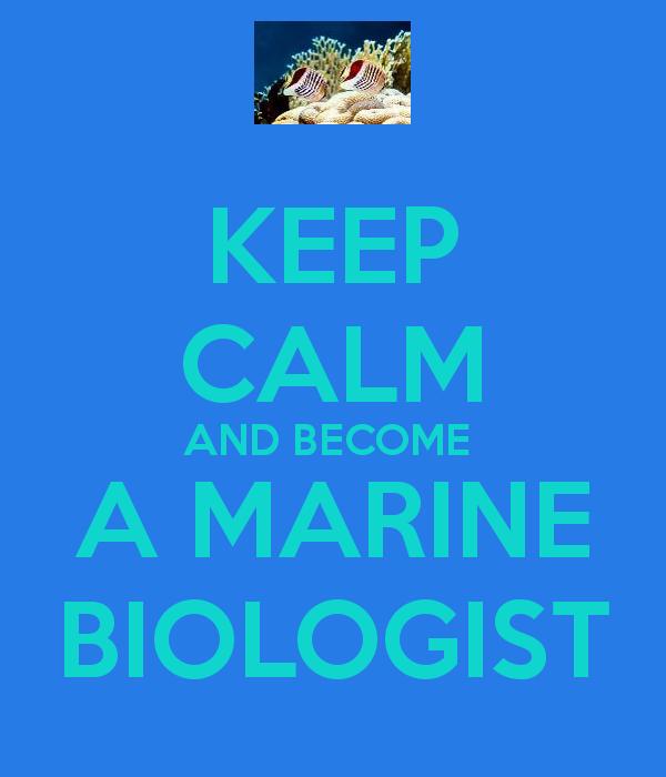 Marine Biology Wallpaper Become a marine biologist 600x700