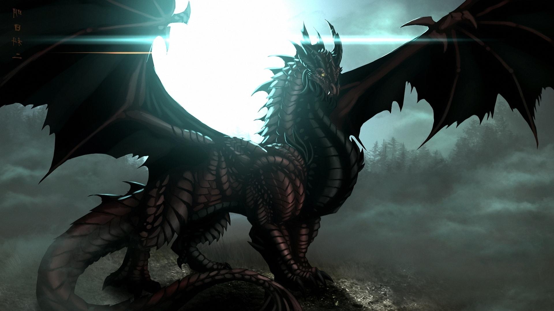 dragon wallpaper hd HD 1920x1080