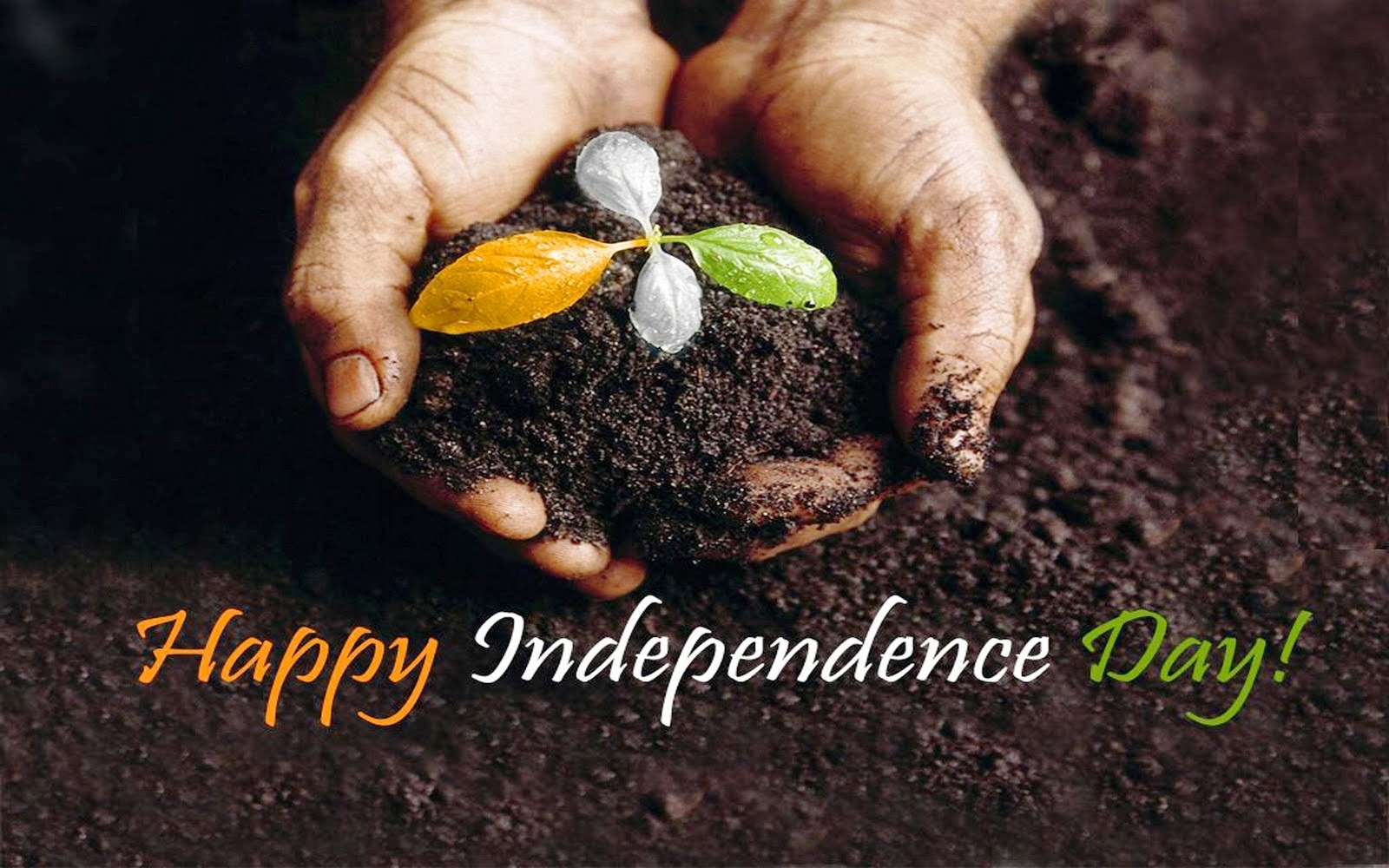 Happy Republic Day 2014 Wallpapers 26 January 2014 Wallpapers 1600x1000