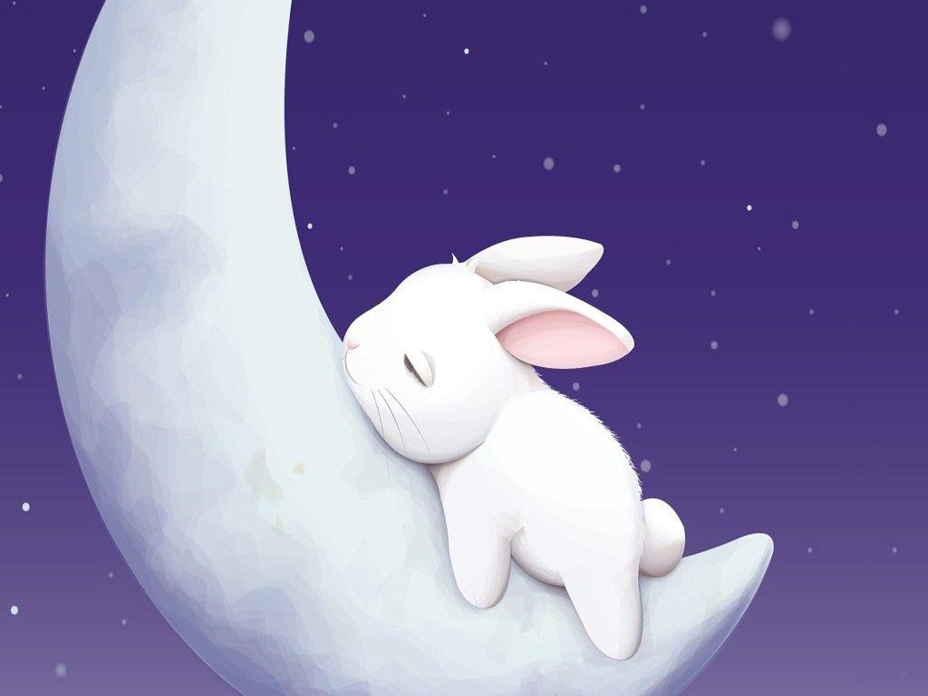 sleeping moon bunny desktop wallpaper Bunny wallpaper Cute 1024x768