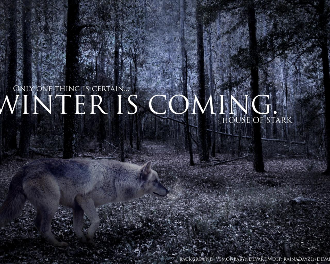 Strider game of thrones winter is coming wolves wallpaper 45758 1280x1024
