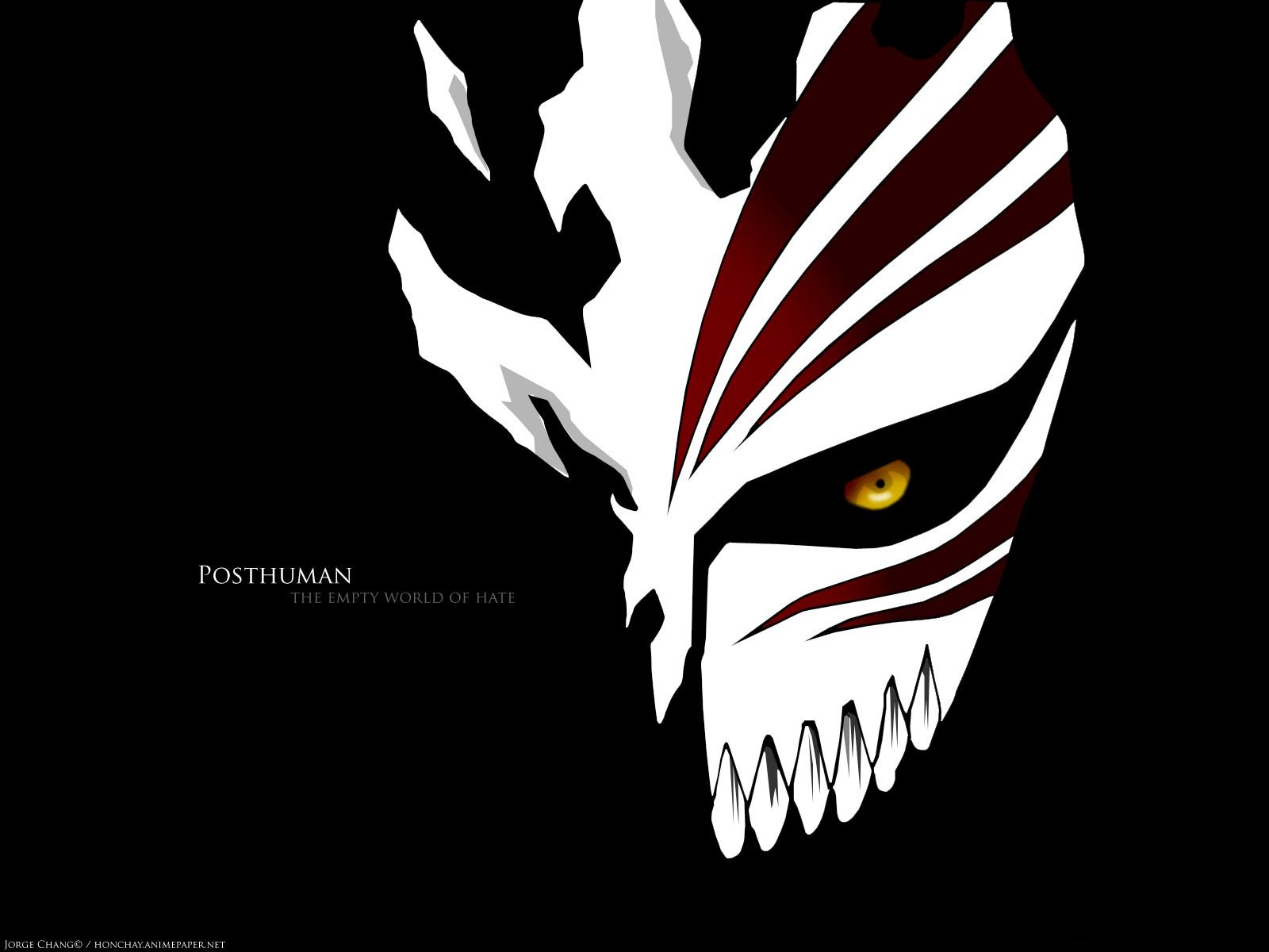 hollow mask   Bleach Anime Wallpaper 7344290 1600x1200