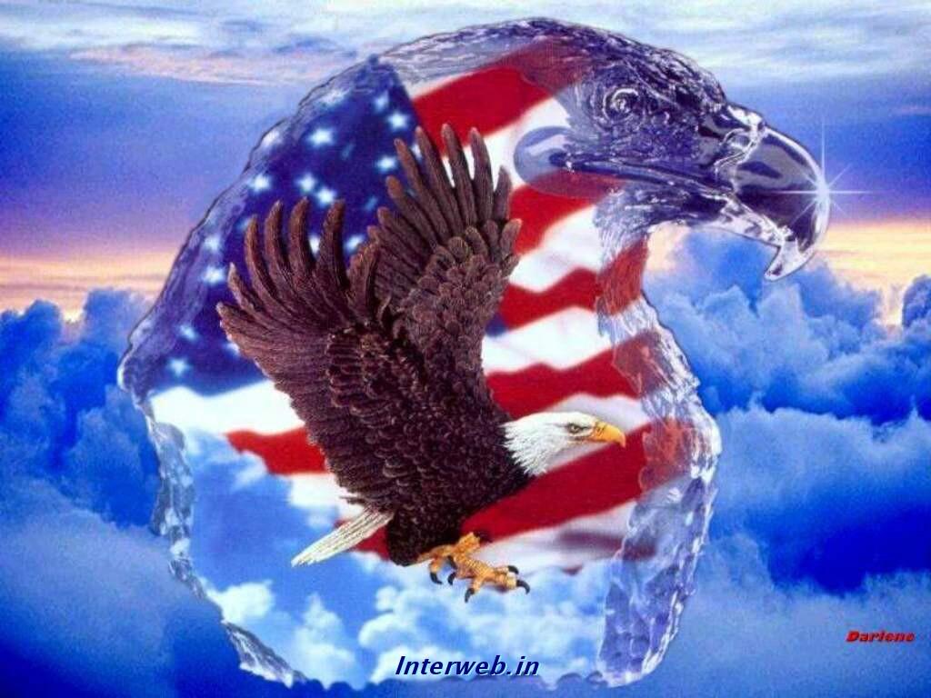Eagle American Flag Desktop Wallpapers 1024x768