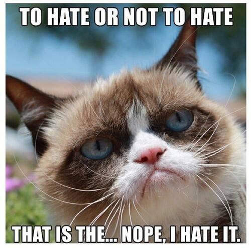 Grumpy Cat Memes Funny 500x495
