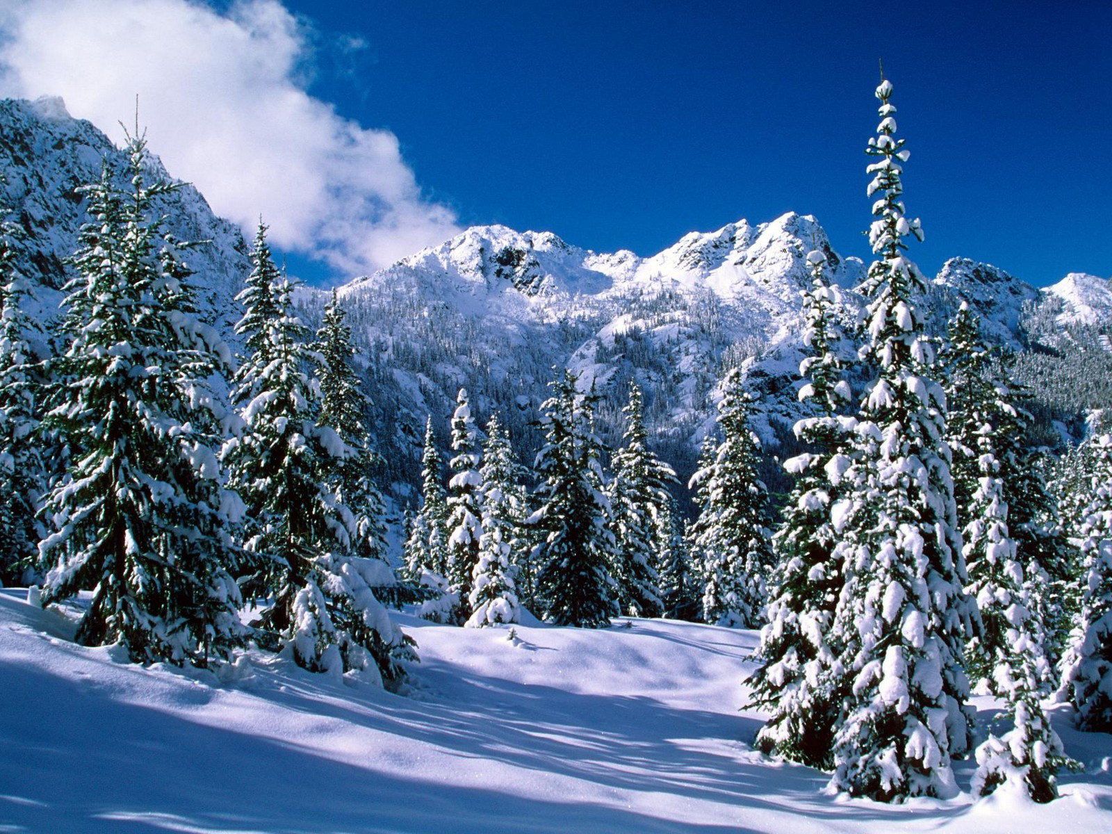 Wallpaper Of Natural Scenery Of Snow Wallpaper World 1600x1200