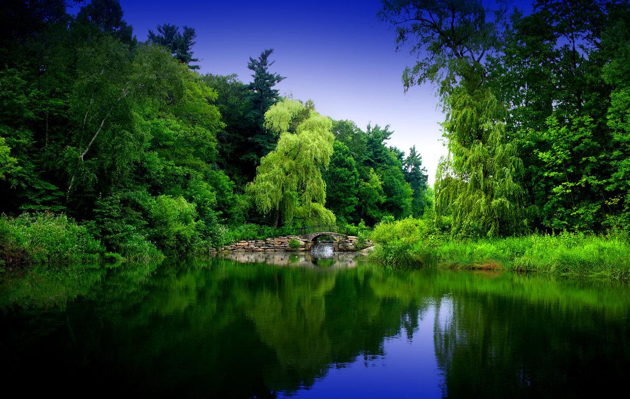 Zen Garden 2 by pueang 1280x812