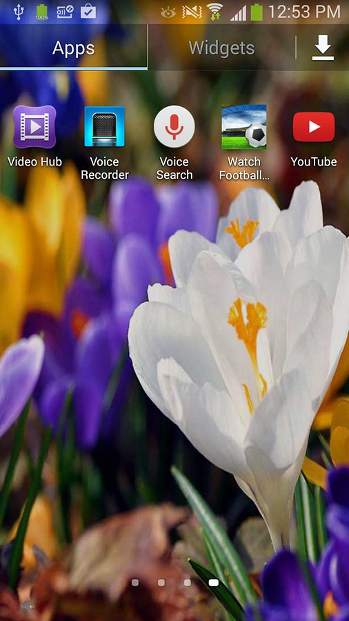Flower Live Wallpapers   Android Apps and Tests   AndroidPIT 506x900
