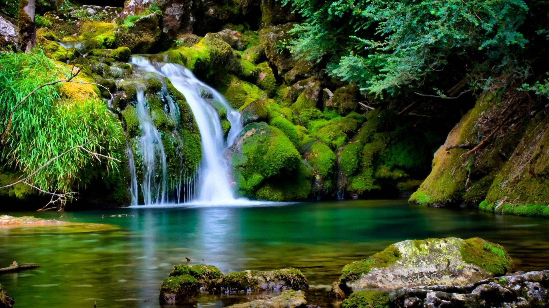 Nature Backgrounds Full Desktop Backgrounds 1920x1080