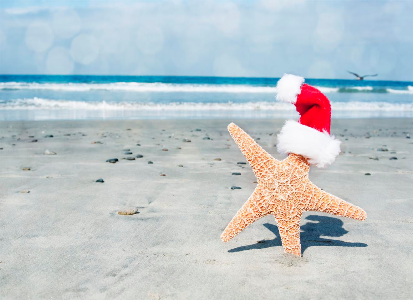 Christmas at the Beach Wallpaper - WallpaperSafari