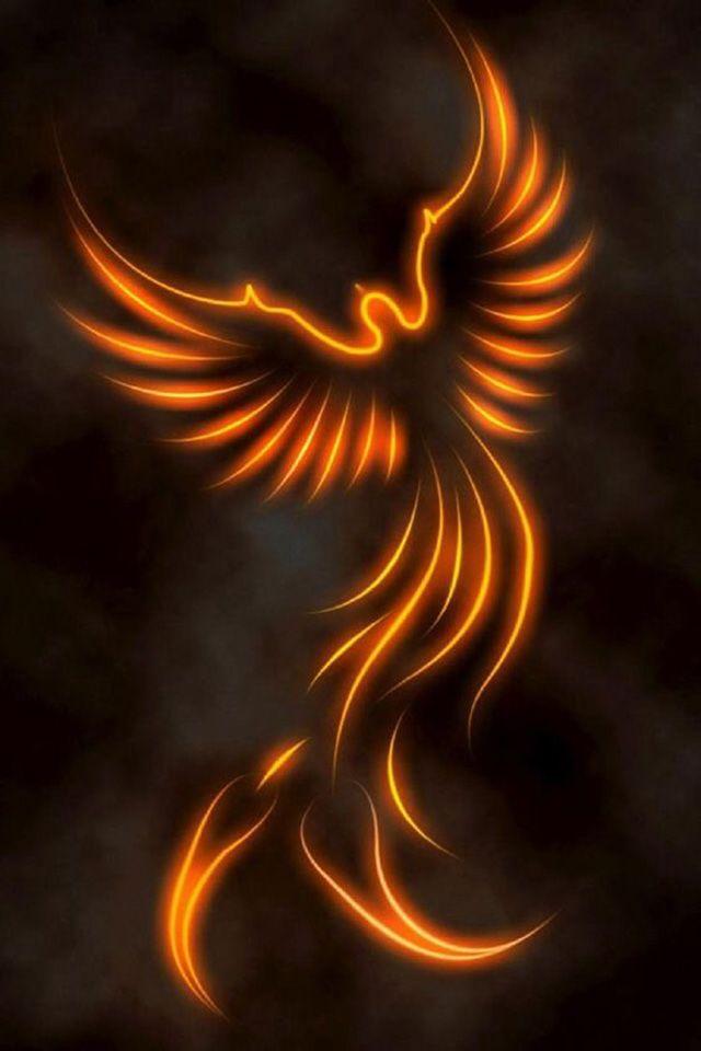 Phoenix Wallpaper 266 Phoenix Phoenix tattoo design Phoenix 640x960