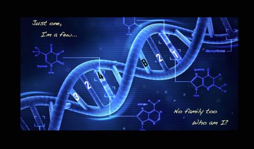 OB DNA wallpaper   Orphan Black Photo 37767987 500x295