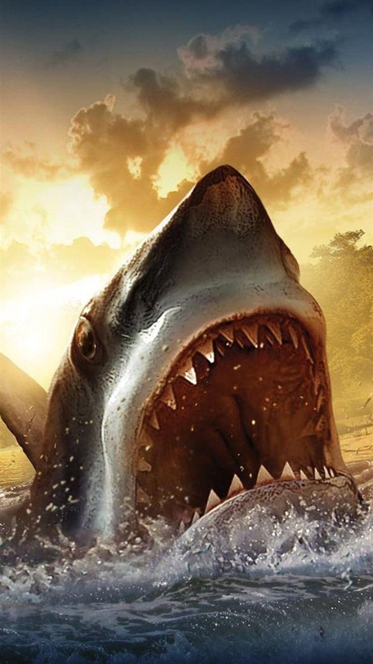 Best Shark iPhone 8 HD Wallpapers   iLikeWallpaper 750x1334