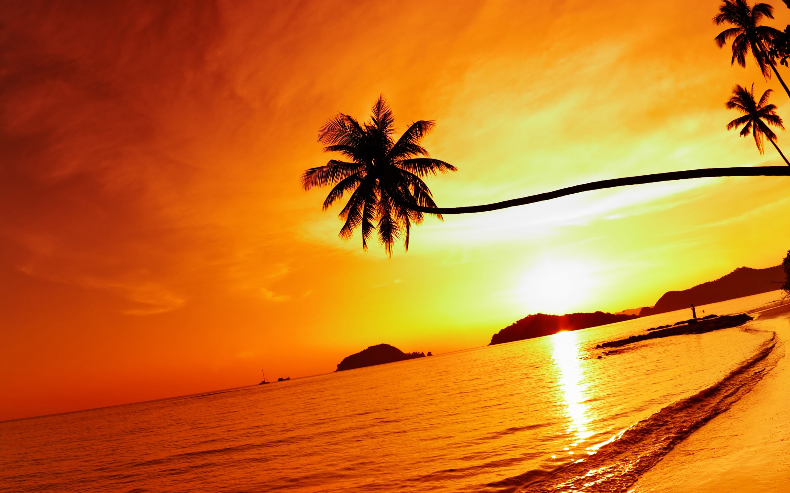 Tropical beach sunset Mak island Thailand Wallpaper HD Wallpapers 2560x1600
