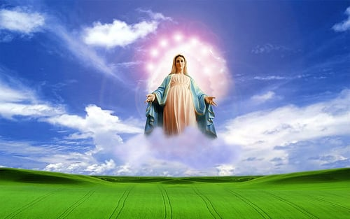Blessed Virgin Mary Catholic Wallpaper Blessed Virgin Mar By 500x313