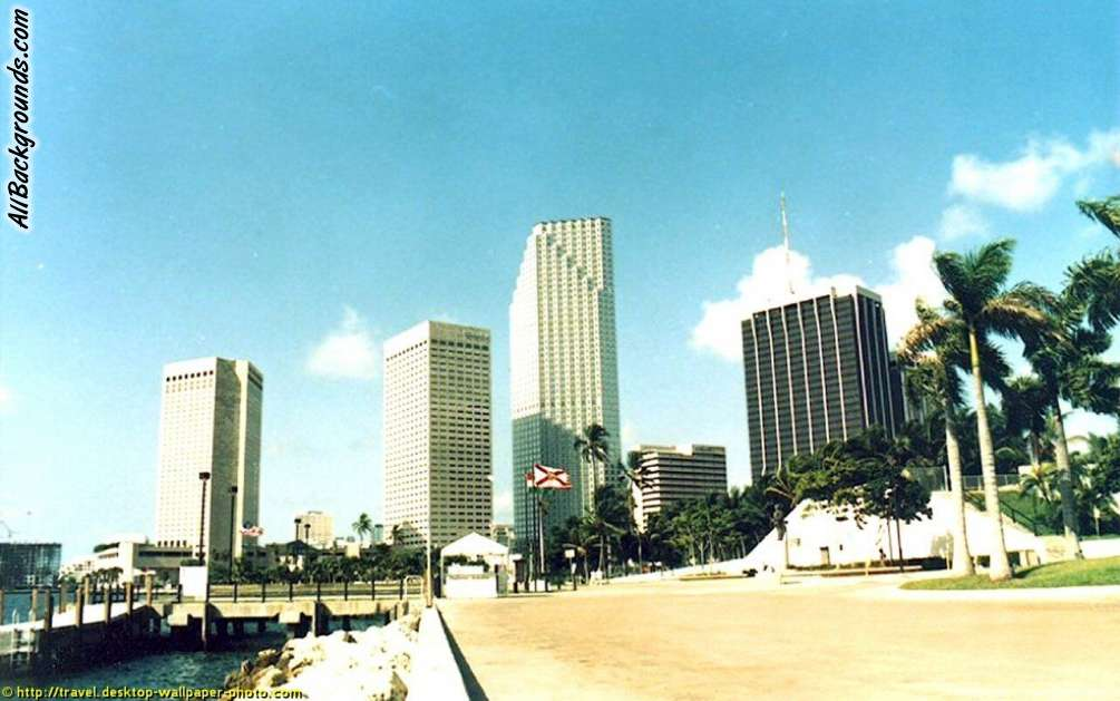 Miami Florida Backgrounds   Twitter Myspace Backgrounds 1005x629