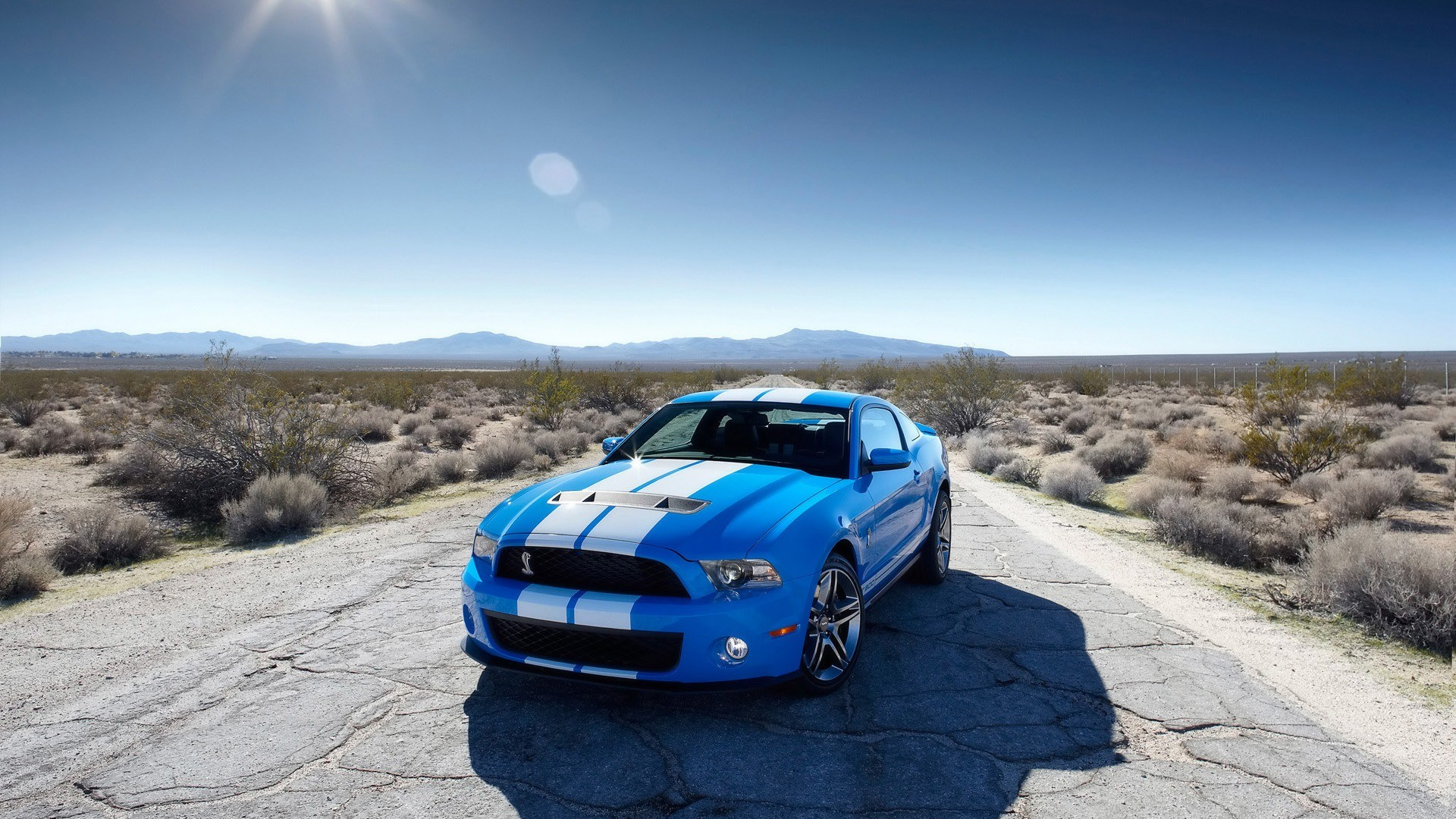 Cool Ford Mustang Sports Cars HD Wallpaper of Car 1920x1080
