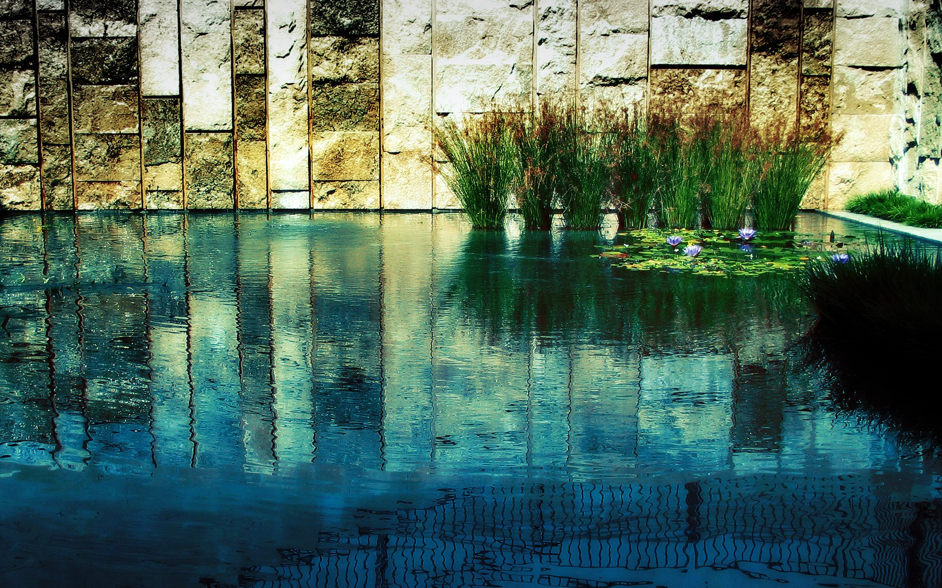 Zen Wallpaper Hd 48710 1920x1200