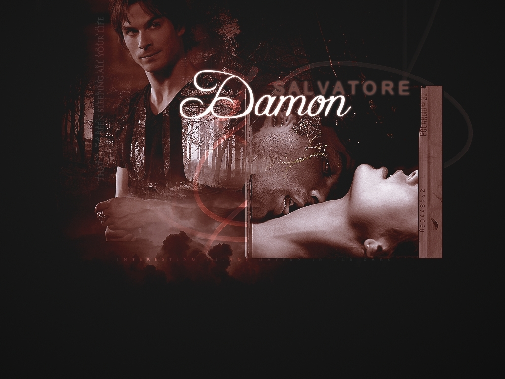 Damon Salvatore   The Vampire Diaries Wallpaper 8415043 1024x768