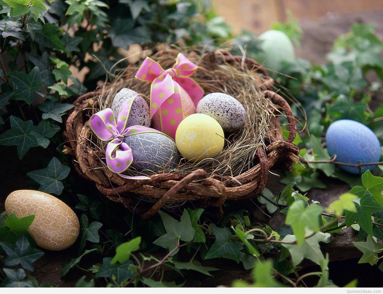 easter egg collection wishes hd desktop wallpapers 1600x1227