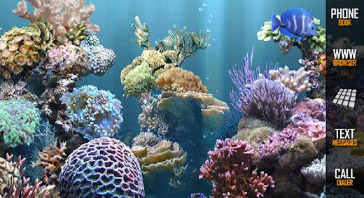 Live Aquarium Wallpaper Fish Tank 520x283