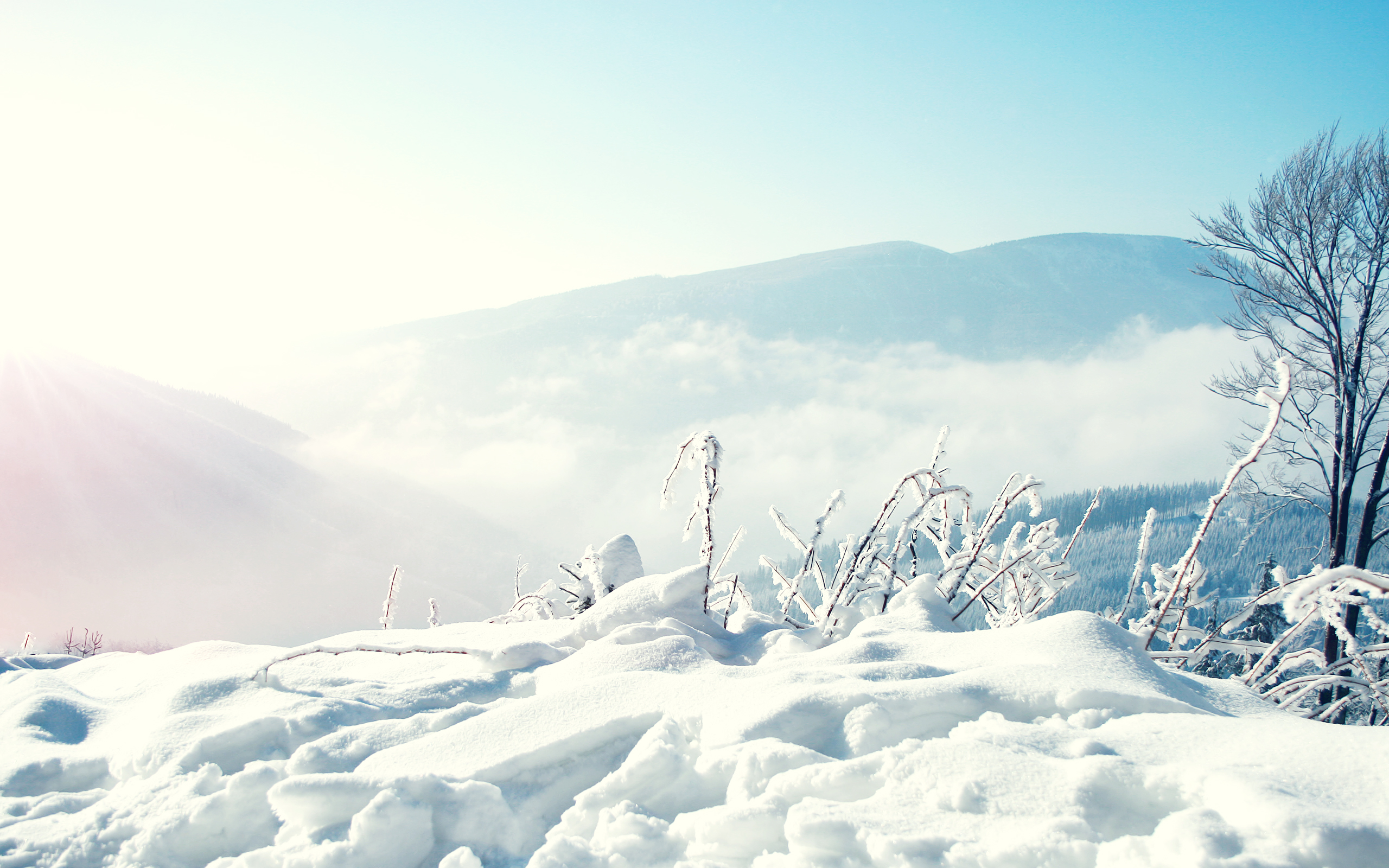 Snow Winter Mountains Wallpapers HD Wallpapers 2560x1600