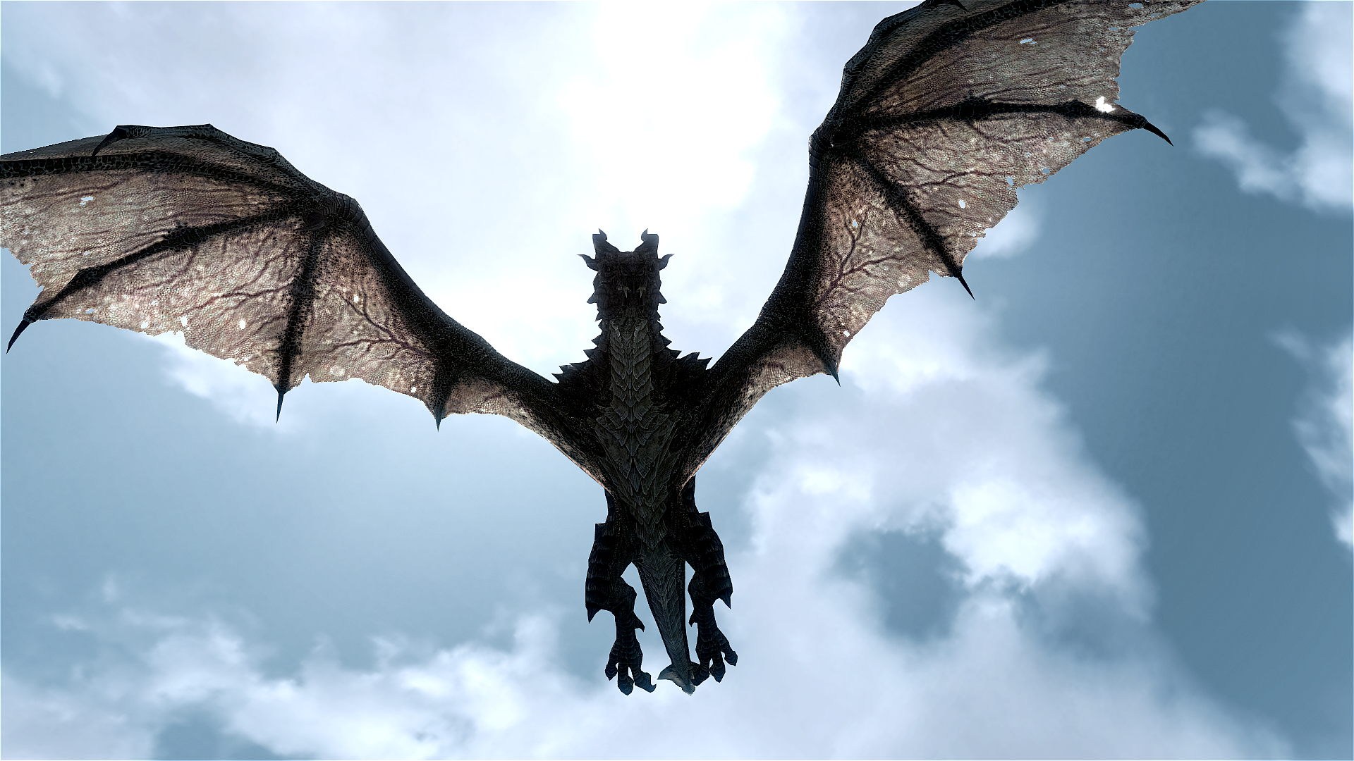 In the clouds flying dragon wallpapers and images 1920x1080