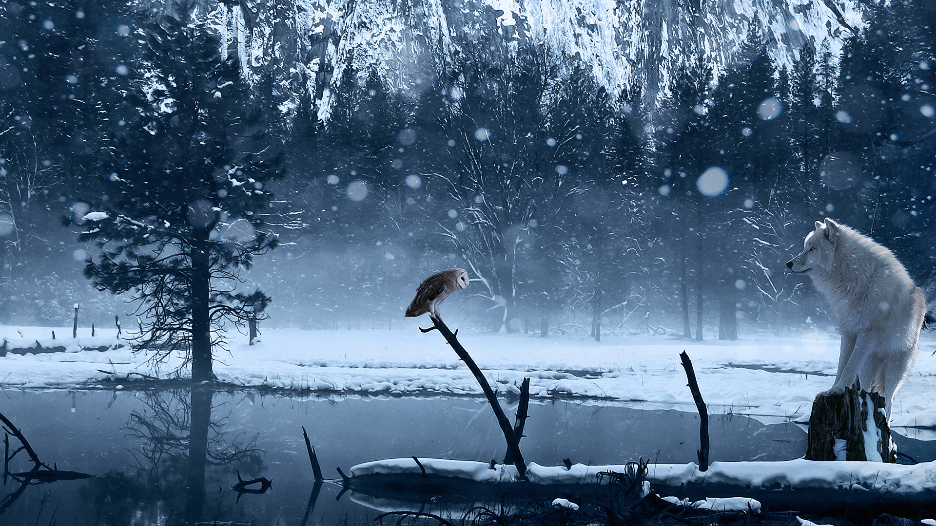 Wallpaper art winter wolf owl snow lake wallpapers rendering 1920x1080