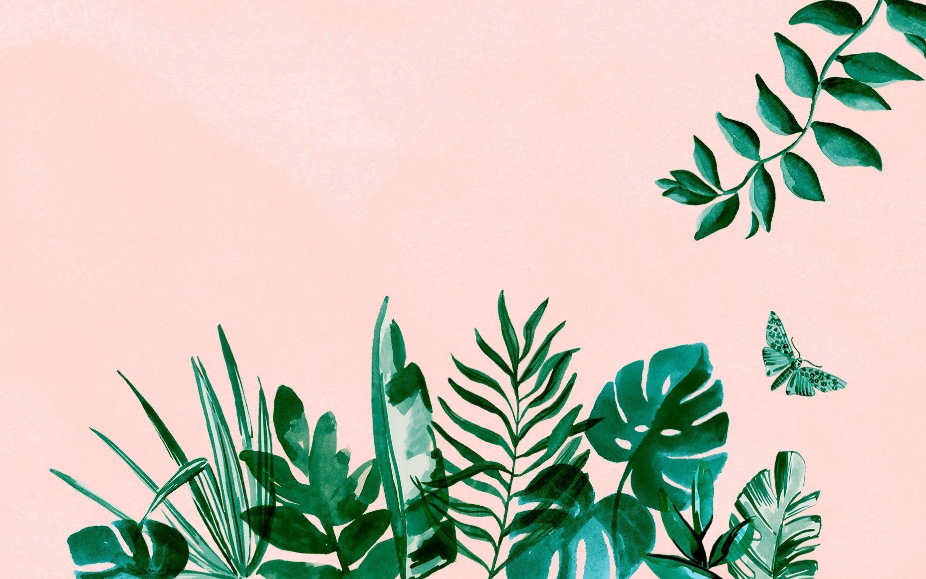 Plant Aesthetic Desktop Wallpapers   Top Plant Aesthetic 1856x1161