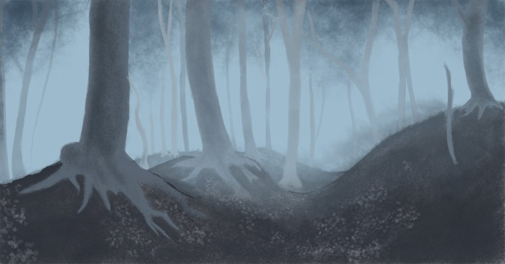 Foggy forest background by inter d 1000x524