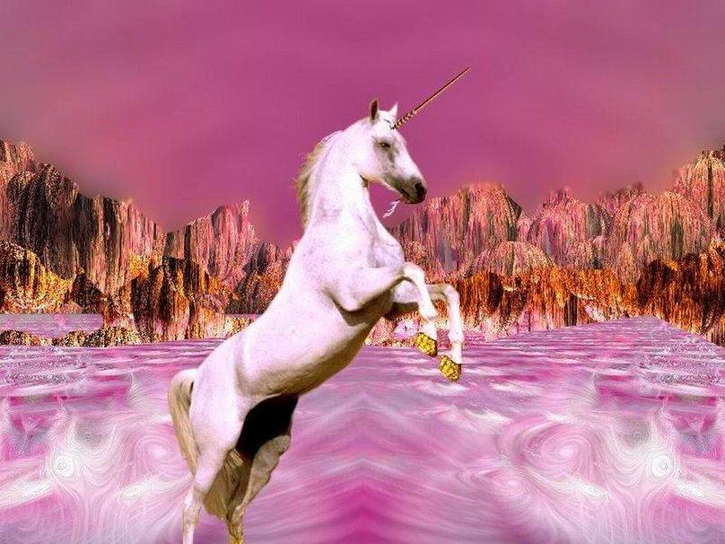 Фото розовый единорог