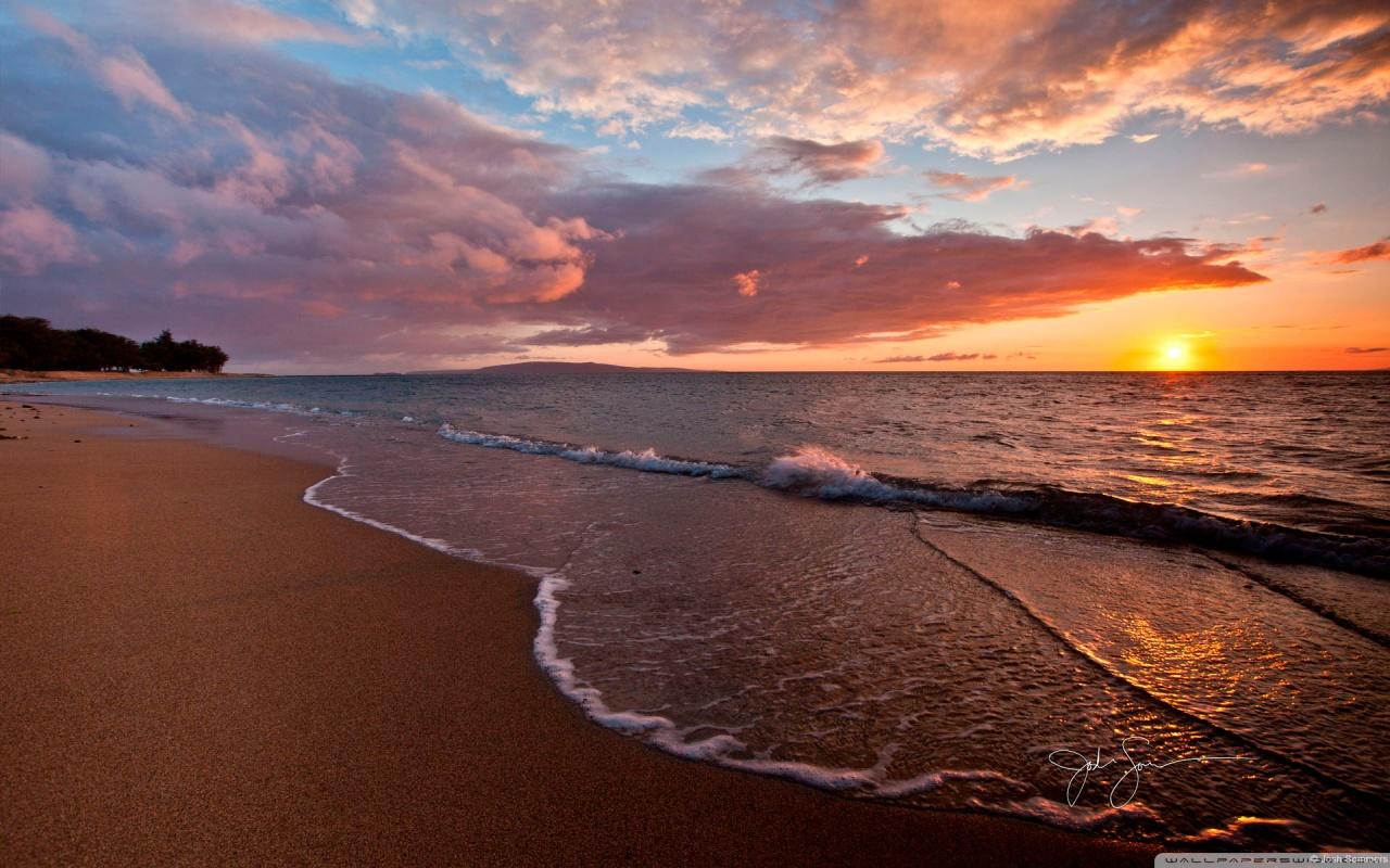 Beach Sunset Wallpaper Wallpaper Graphic and Vector 1280x800