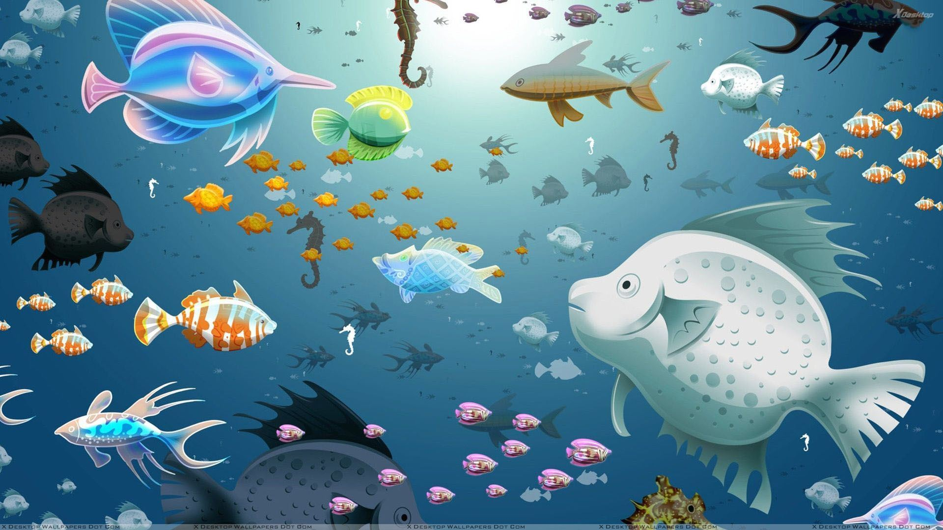 Free Download Artistic Colorful Fish In Water Wallpaper 1920x1080 For Your Desktop Mobile Tablet Explore 49 Fish In Water Wallpaper Hd Fish Wallpaper Free Fish Wallpaper For Desktop Wallpaper Fish