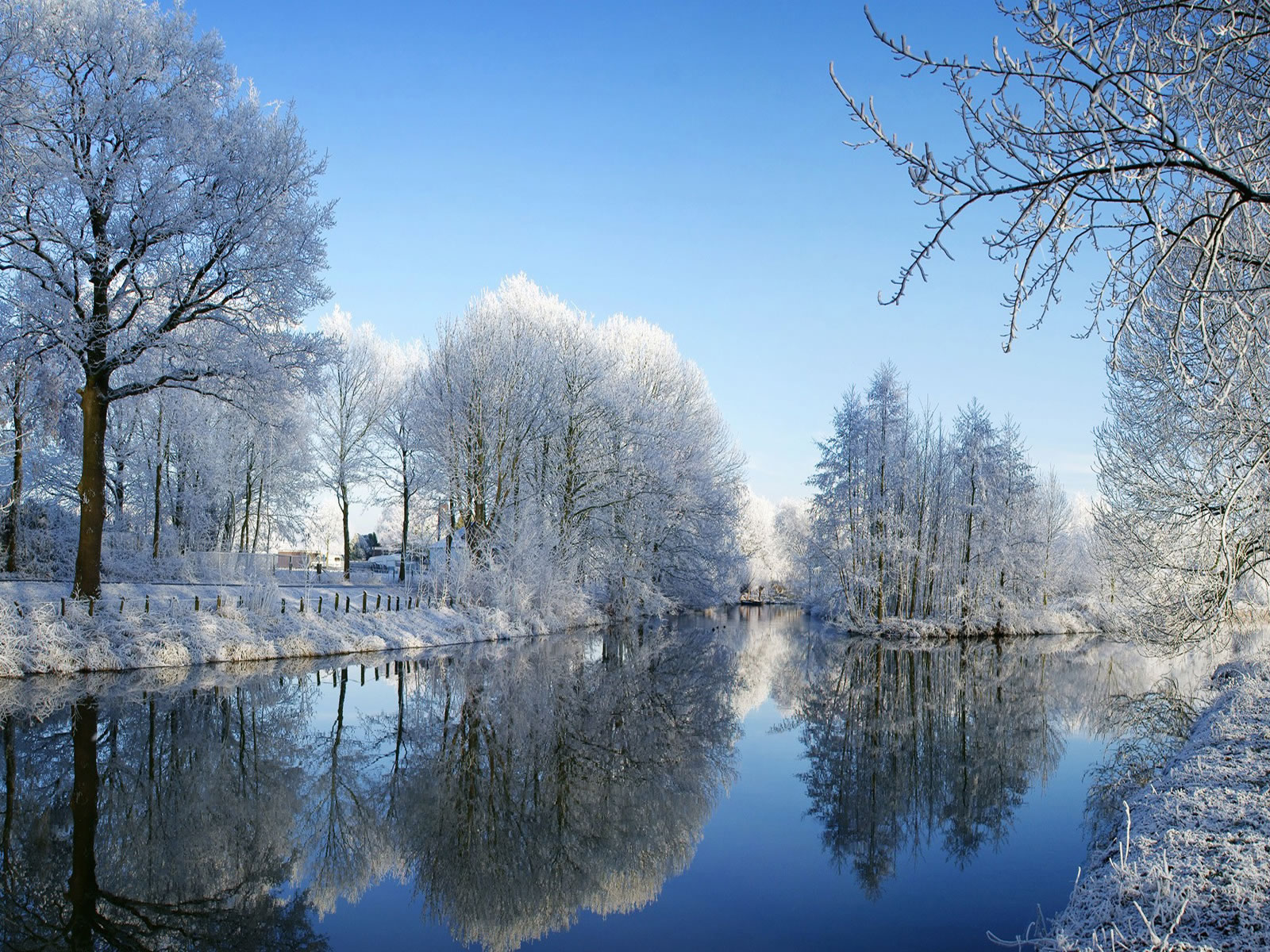 Beautiful Winter Wallpaper Desktop Backgrounds 1600x1200 1600x1200