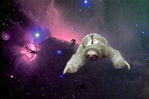 SPACE SLOTH 500x333