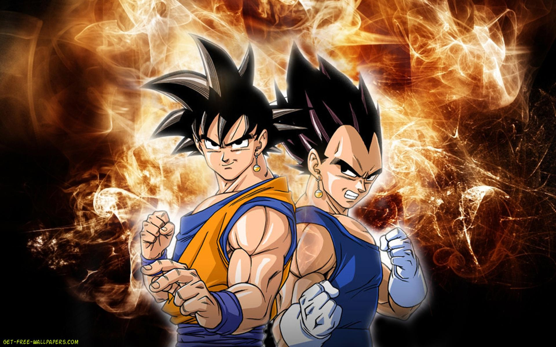 Download Goku And Vegeta Wallpaper 1920x1200